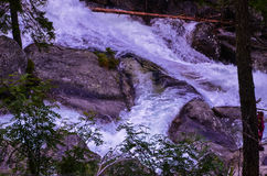 Gebirgsfluss in hohem Tatras Stockfotografie