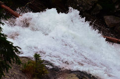 Gebirgsfluss in hohem Tatras Stockbilder