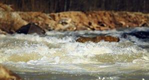 Gebirgsfluss im Frühjahr stockbild