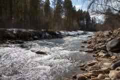 Gebirgsfluss im Frühjahr Lizenzfreie Stockfotografie