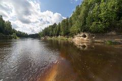 Gebirgsfluss im Sommer umgeben durch Wald Stockbilder