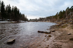 Gebirgsfluss im Sommer umgeben durch Wald Lizenzfreie Stockbilder