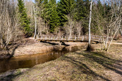 Gebirgsfluss im Sommer umgeben durch Wald Stockbild