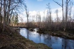 Gebirgsfluss im Sommer umgeben durch Wald Lizenzfreies Stockbild
