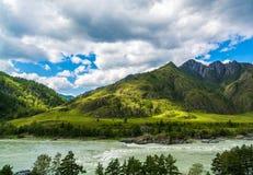 Gebirgsfluss Katun, Russland, Sibirien, Altai-Berge, Katun-ri lizenzfreies stockfoto