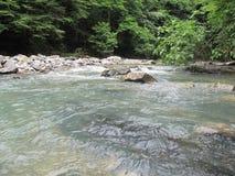 Gebirgsfluss in Krasnodar Krai Stockbild