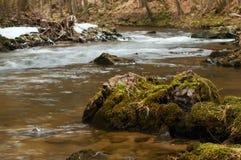 Gebirgsfluss mit altem Baumstamm Lizenzfreie Stockbilder