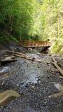 Gebirgsfluss mit einer Holzbrücke lizenzfreies stockfoto
