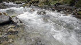 Gebirgsfluss mit Felsen und Moos stock footage