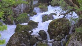 Gebirgsfluss mit Trinkwasser in Kaukasus-Berg in Georgia nahe Kutaisi Martvili-Schlucht stock video