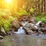 Gebirgsfluss und heller Sonnenschein Lizenzfreies Stockfoto
