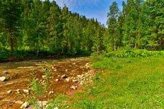 Gebirgsfluss und Holz Stockbild