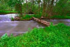 Gebirgsfluss und Holz Stockfotografie