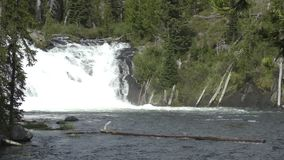 Gebirgsfluss und Wasserfall Wyoming stock footage
