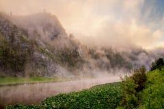 Gebirgsfluss unter Felsenwänden im Nebel Lizenzfreies Stockfoto