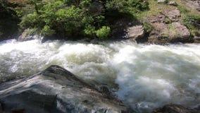 Gebirgsfluss Utah stock video footage