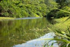 Gebirgsfluss Vietnams Phu Yen Stockbild