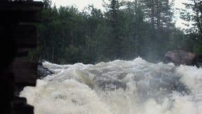 Gebirgsfluss-Wasserstrom stock footage