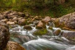 Gebirgsflusswasserstrom über Felsen im Wald Stockbild