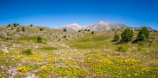 Gebirgsgipfel Gran Sasso an Hochebene Campos Imperatore, Abruzzo, Italien Stockfoto