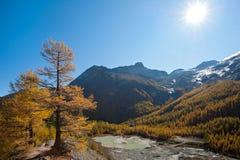 Gebirgsgletschersee über Saas Gebühr, die Schweiz Lizenzfreies Stockbild