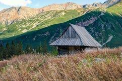 Gebirgshölzerne Hütte Stockbilder