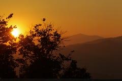 Gebirgshimmel Schattenbild-Landschaftsblume Stockfotos