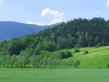 Gebirgslandschaft Stockbild
