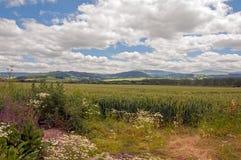 Gebirgslandschaft in den Brecon-Leuchtfeuern von Wales Stockfoto