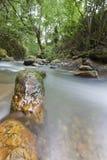 Gebirgslandschaft mit Fluss, cantabia, Spanien Stockfotos