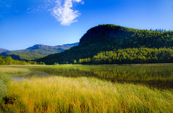 Gebirgslandschaft mit See Stockbilder
