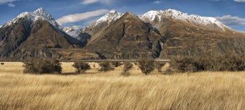 Gebirgslandschaft, Neuseeland stockbild