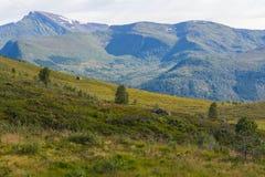 Gebirgslandschaft, Norwegen Lizenzfreies Stockfoto