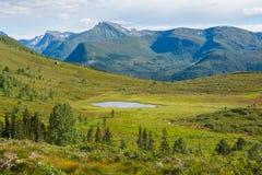Gebirgslandschaft, Norwegen Lizenzfreies Stockbild