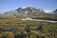 Gebirgslandschaft Sarek im Nationalpark Stockfotografie