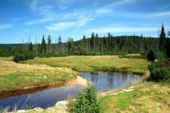 Gebirgslichtung Fluss Lizenzfreies Stockfoto