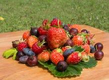 Gebirgsnatürliche frische Vitamine Stockbilder