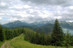 Gebirgspfad am Rand des Waldes Lizenzfreie Stockbilder