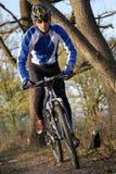 Gebirgsradfahrer Lizenzfreies Stockbild