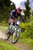 Gebirgsradfahrer auf abschüssigem rce Lizenzfreie Stockbilder