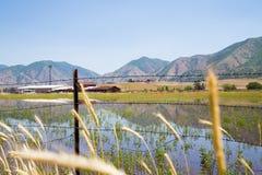 Gebirgsreflexion Utah-Ackerland Stockbilder