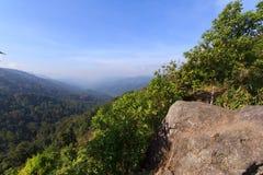 Gebirgsregenwälder Stockbilder