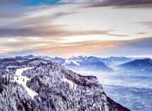 Gebirgsschnee-Skiwald stockbild
