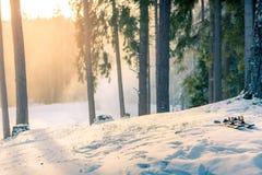 Gebirgsskis bei Sonnenuntergang im schneebedeckten Wald Lizenzfreies Stockfoto