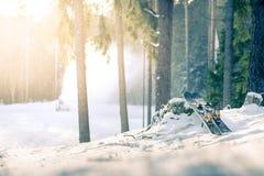 Gebirgsskis bei Sonnenuntergang im schneebedeckten Wald lizenzfreie stockfotos