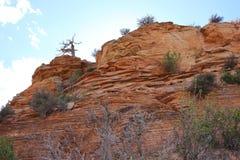 Gebirgsskyline in Zion National Park Lizenzfreie Stockfotos