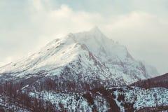 Gebirgsspitze im Winter Stockbild