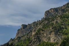 Gebirgsspitze von Adler ` s Felsen überwältigt mit Koniferenwald und Lichtung von Rila-Berg Stockfotografie