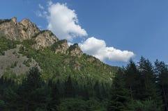 Gebirgsspitze von Adler ` s Felsen überwältigt mit Koniferenwald und Lichtung von Rila-Berg Lizenzfreies Stockfoto