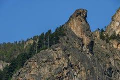 Gebirgsspitze von Adler ` s Felsen überwältigt mit Koniferenwald und Lichtung von Rila-Berg Lizenzfreie Stockfotos